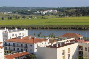 Casas, rio e campos de arroz