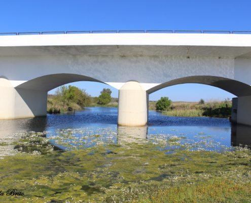 Ponte da ribeira Maria Delgada.