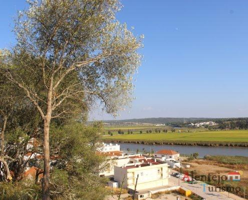 Oliveira, telhados e rio
