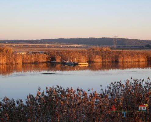 Vegetação endémica e barco