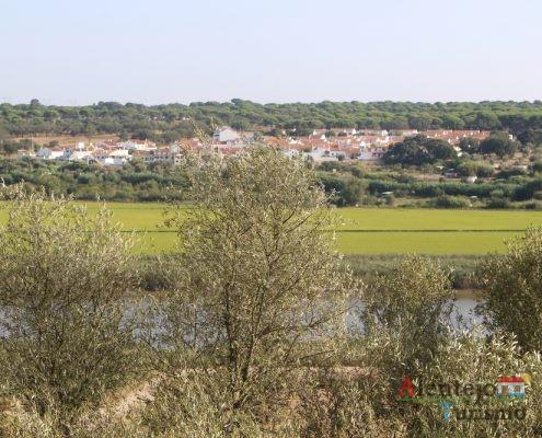 Oliveiras, povoação e rio
