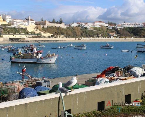 Gaivotas, barcos e cidade