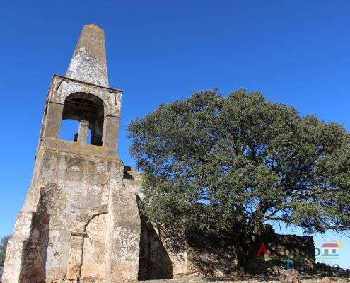 Igreja em ruínas e árvore