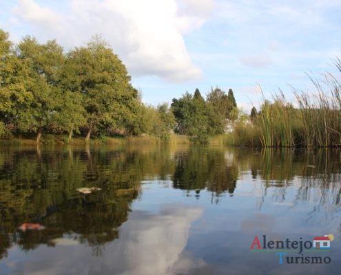 Árvores e nuvens refletidas em lago