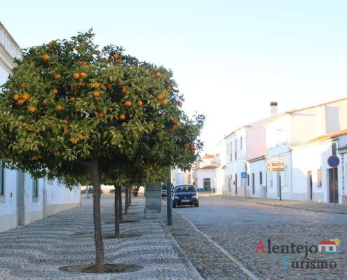 Rua com laranjeiras