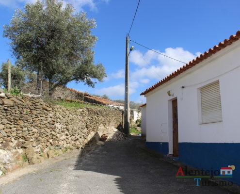 Rua alentejana com oliveira
