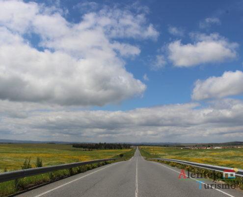 Estrada entre campos floridos
