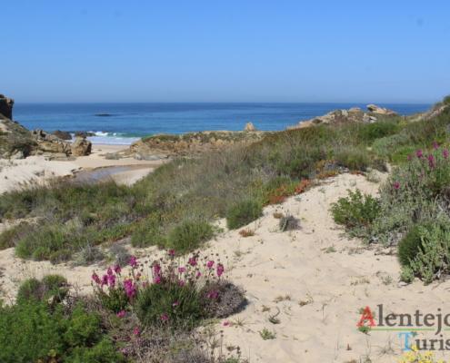Praia da Foz do Burrinho: caminho nas dunas