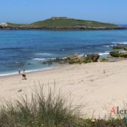 Praia da Ilha do Pessegueiro - Ilha