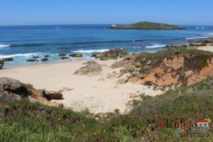 Praia e ilha
