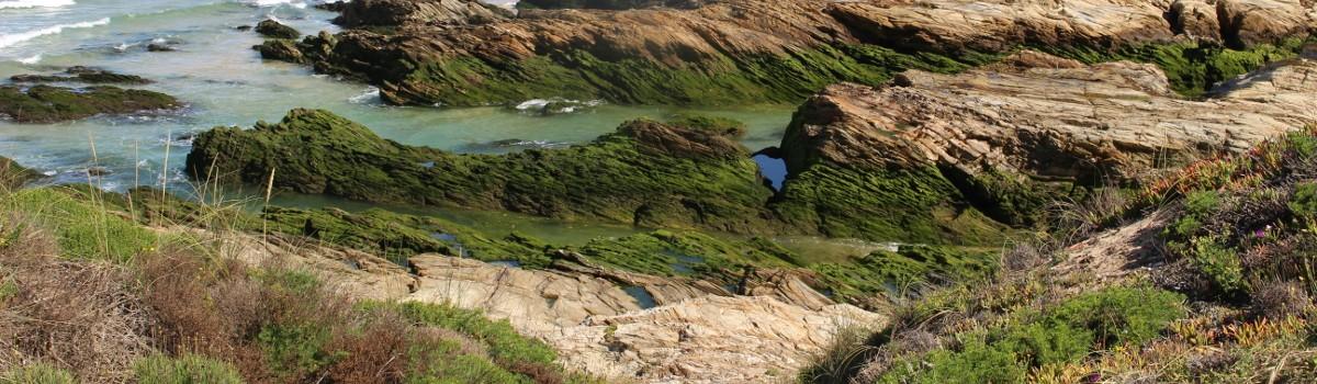 Praia com piscina natural