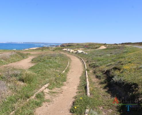 Caminho pedestre - Praia do Poro Covinho