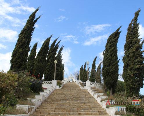 Escadaria ladeada de árvores