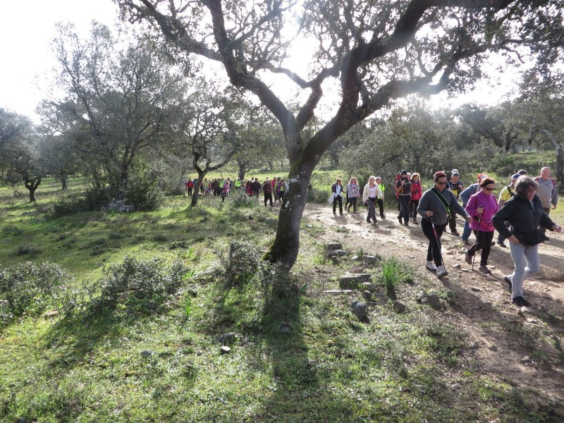 caminhadas_alcacovas_outdoor_trails0041