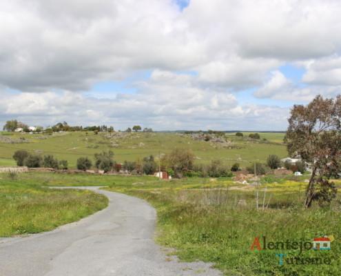 Casével - estrada em campo verde