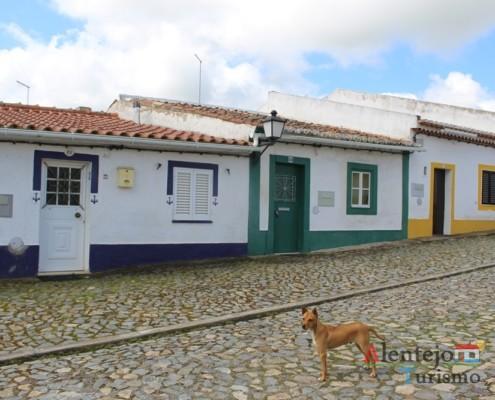 Rua de casas coloridas e cão
