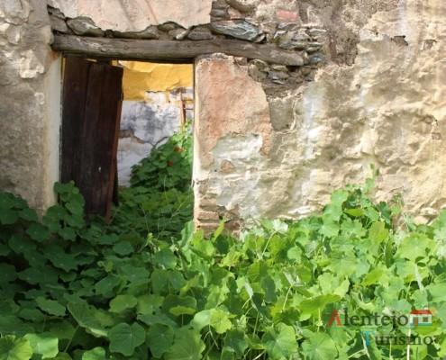 Flores - Alcarias – capital dos cata-ventos – concelho de Ourique