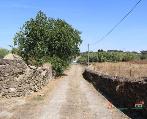 O caminho - Ida ao poço – Grandaços – Ourique - Alentejo