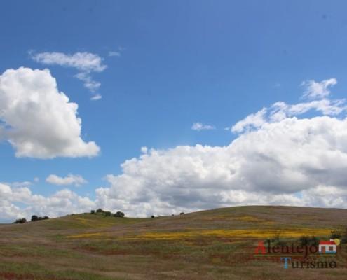 Campos na primavera - ida às atubras (trufas alentejanas) - concelho de Mértola - Alentejo