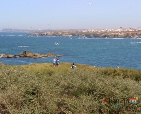 Ilha do Pessegueiro; Porto Covo; Concelh