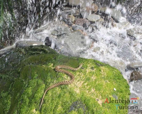 Cascatas das cobras – Praia da Amália – Concelho de Odemira - Alentejo