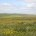 Rota dos Cata-Ventos; Alentejo; Portugal; AlentejoTurismo