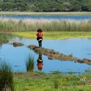 Lagoa de Santo André - Praia da Galé - Alentejana Guida Brito: considerada The best of 2020