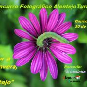 """I Concurso fotográfico AlentejoTurismo """"Olhar a primavera, no Alentejo"""""""