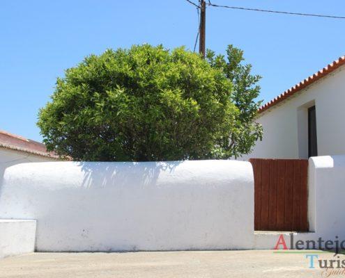 Casa branca, quintal e árvore.