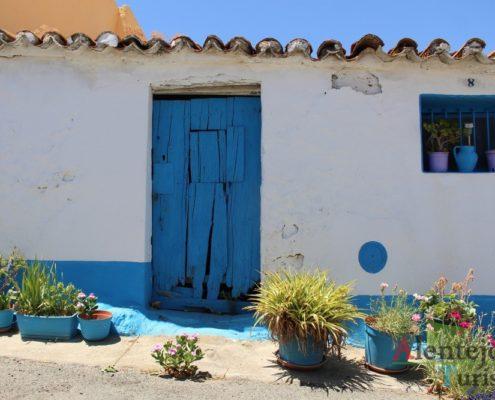 Casa com porta e barras azuis; vasos de flores.